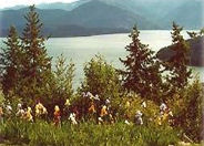 Spring Lake Pend Oreille