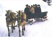 North Idaho Sleigh Ride